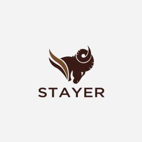 projekt-logo-stayer