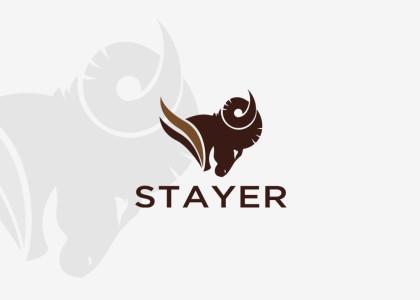 projekt-logo-baran