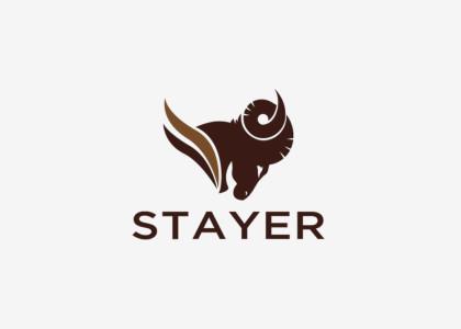 projekty-logo-stayer