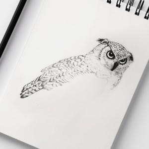 grafika-olowkiem-ilustracja
